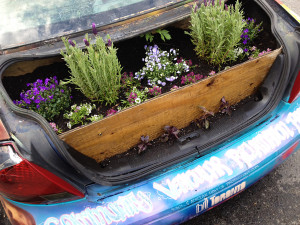 Garden Car - new spring trunk by Yvonne Bambrick